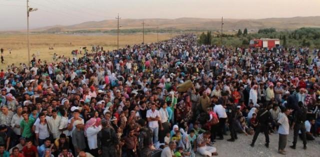 imigranti-10-696x343